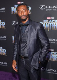HOLLYWOOD, CA - JANUARY 29: Actor Darris Love at the Los Angeles World Premiere of Marvel Studios' BLACK PANTHER at Dolby Theatre on January 29, 2018 in Hollywood, California. (Photo by Jesse Grant/Getty Images for Disney) *** Local Caption *** Darris Love