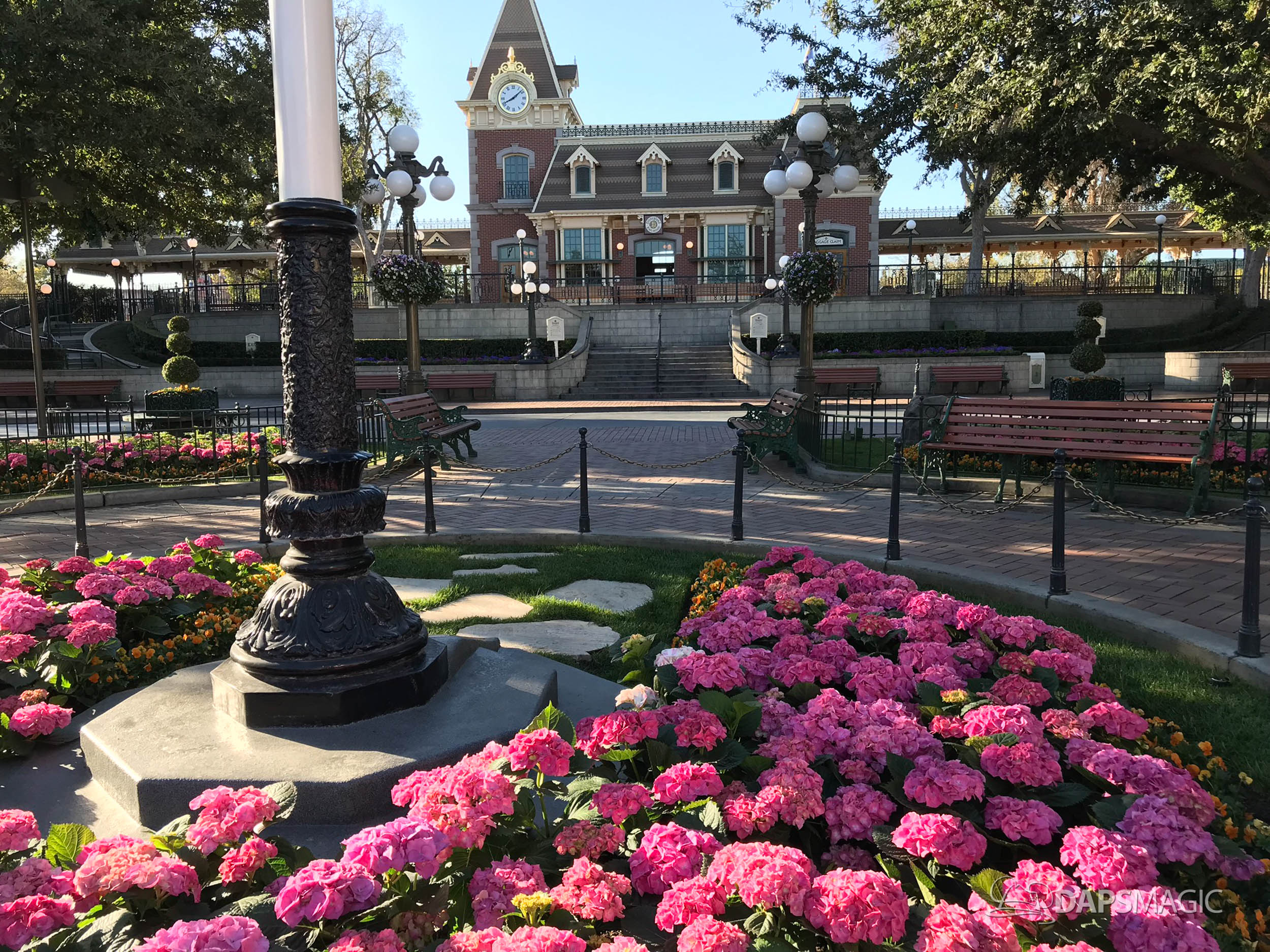 New Brick Around Streetcar Track Revealed as Town Square Walls Come Down at Disneyland