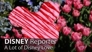 A Lot of Disney Love - DISNEY Reporter