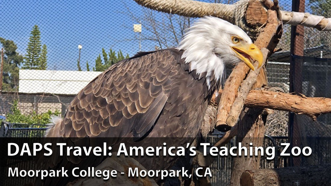 DAPS Travel: America's Teaching Zoo