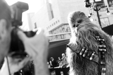 HOLLYWOOD, CA - MAY 10: (EDITORS NOTE: Image has been shot in black and white. Color version not available.) Chewbacca attends the world premiere of ìSolo: A Star Wars Storyî in Hollywood on May 10, 2018. (Photo by Charley Gallay/Getty Images for Disney)