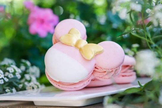 Millenial Pink Macaron
