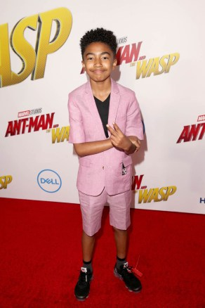"""HOLLYWOOD, CA - JUNE 25: Miles Brown attends the Los Angeles Global Premiere for Marvel Studios' """"Ant-Man And The Wasp"""" at the El Capitan Theatre on June 25, 2018 in Hollywood, California. (Photo by Jesse Grant/Getty Images for Disney) *** Local Caption *** Miles Brown"""