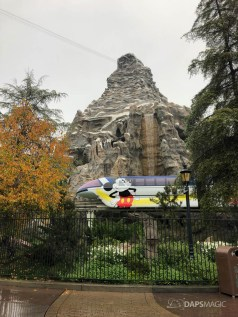 Rainy Day at the Disneyland Resort-8