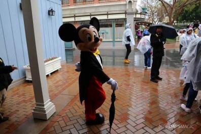 Rainy Day at the Disneyland Resort-89