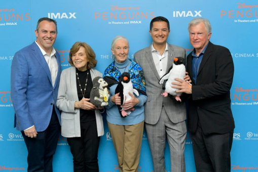NEW YORK, NEW YORK - APRIL 14: (L-R) Paul Baribault, Marine Biologist Sylvia Earle, Disneynature Ambassador Dr. Jane Goodall and President of the Global Penguin Society Pablo Borboroglu attend Disneynature's 'PENGUINS' Premiere hosted by The Cinema Society at AMC Lincoln Square Theater on April 14, 2019 in New York. (Photo by Roy Rochlin/Getty Images for Disney Studios)