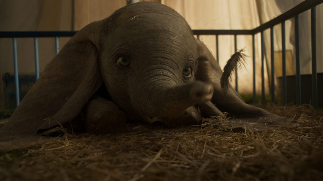 """EARS TO YOU – In Disney's all-new, live-action feature film """"Dumbo,"""" a newborn elephant with oversized ears make him a laughingstock in an already struggling circus. But Dumbo takes everyone by surprise when they discover he can fly. Directed by Tim Burton, """"Dumbo"""" flies into theaters on March 29, 2019. ©2018 Disney Enterprises, Inc. All Rights Reserved."""
