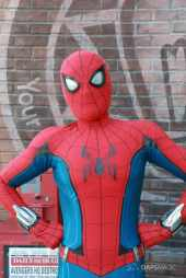 Spider-Man With New Suit at Disney California Adventure-14