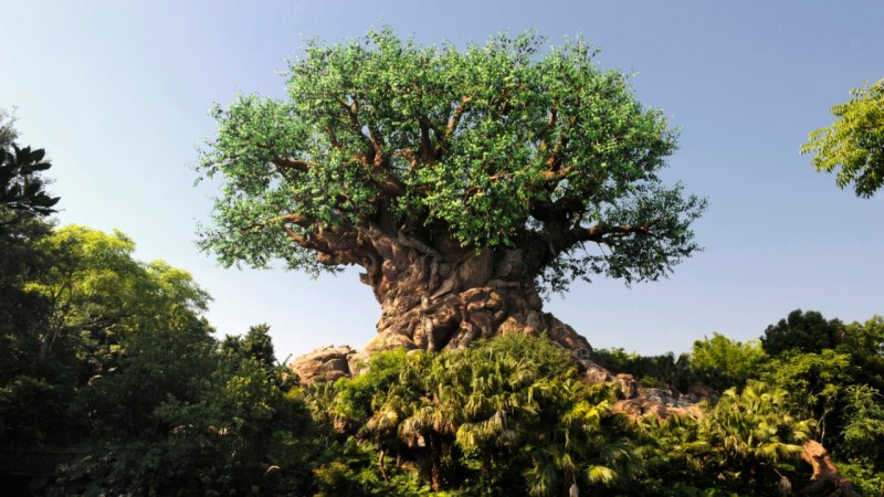 Tree of Life - Disney's Animal Kingdom