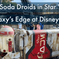 New Soda Droids in Star Wars: Galaxy's Edge at Disneyland