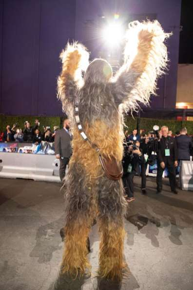 Chewbacca arrives for the World Premiere of Star Wars: The Rise of Skywalker, the highly anticipated conclusion of the Skywalker saga, in Hollywood, CA, on December 16, 2019..(photo: Alex J. Berliner/ABImages)