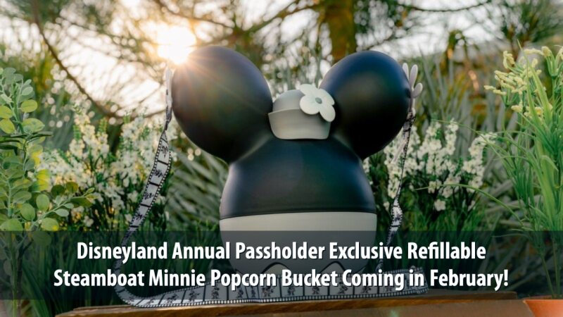 Disneyland Annual Passholder Exclusive Refillable Steamboat Minnie Popcorn Bucket Coming in February!