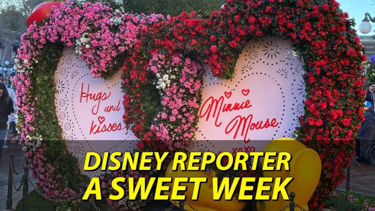 A Sweet Week - DISNEY Reporter