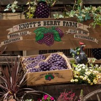 Knott's Boysenberry Festival Specialty Items Announced