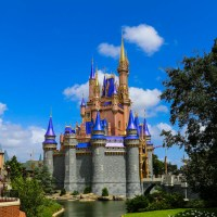 Thoughts on the Pros and Cons of Walt Disney World Resort After a Phased Reopening Visit