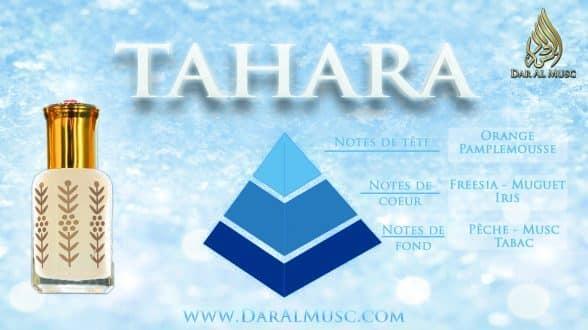Tout ce qu'il faut savoir sur le Musc Tahara