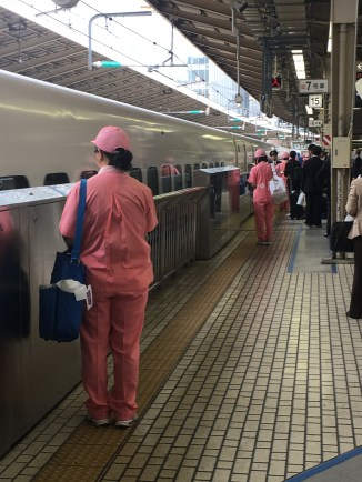 High Speed Train cleaners