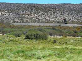 oil well on border between Neuquen and Mendoza provinces