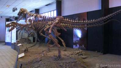 Ischigualasto: the park is an important site for dinosaur research. The onsite exhibit shows a reconstruction of dinosaur skeletons; the originals are kept in a museum in San Juan.