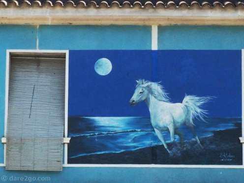 White horse at full moon – opposite the train station on Ramon Alvarez