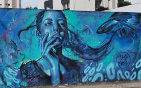 Another street art piece by 'Valdi Valdi' on a wall around apartments on the waterfront of Florianópolis.