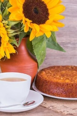 Fresh Homemade Pumpkin Pie with sunflower on wooden background
