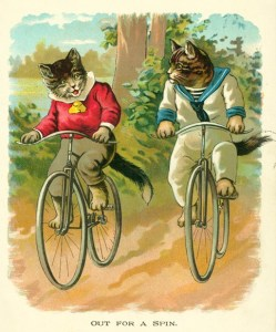 Out_for_A_Spin - cats cycling