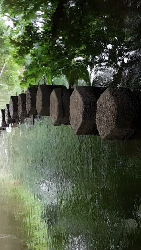 Stepping stones across a slow-flowing river, surrounded by trees