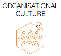 Hofstede Insights Organisational Culture logo. I am experienced in using the Organisational Culture approach as a coach and facilitator