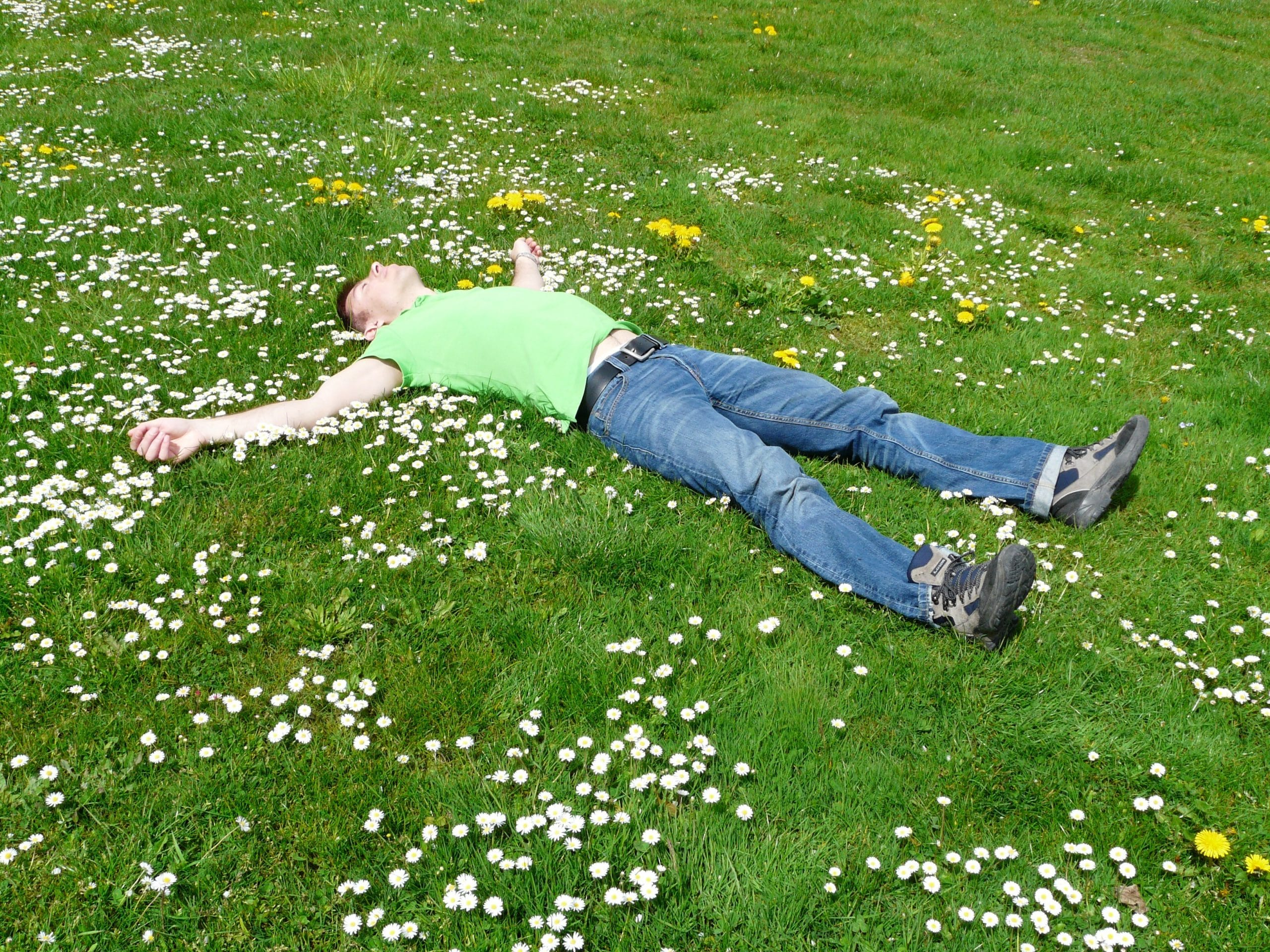 High angle view of a person lying down on grass