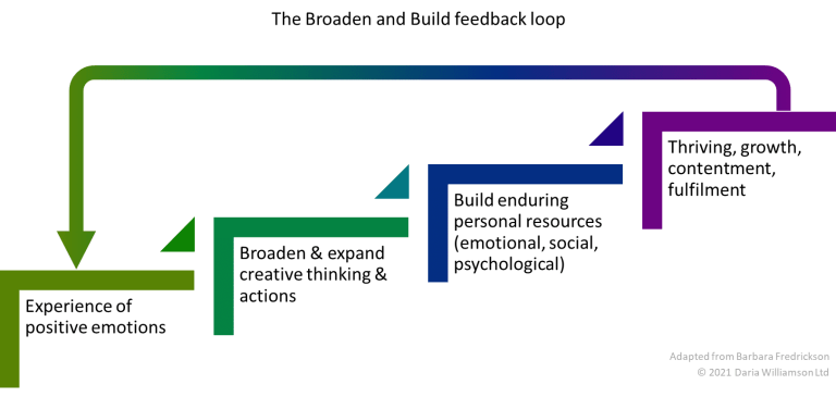 A diagram showing steps up from positive emotions to flourishing, and a feedback arrow back to positive emotions