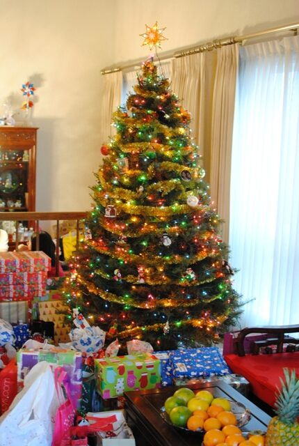 Christmas 2010 – 12/25/10