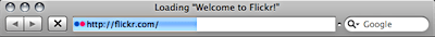 Screenshot of page load progress bar in Safari 3.