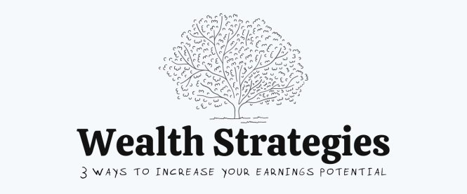 wealth strategies course