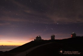 Orion Rising in the Dawn