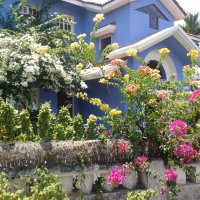 Benaulim, Goa (2)