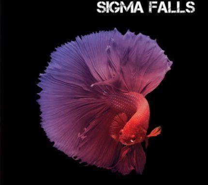Sigma Falls - TIRO