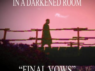 Final Vows - In A Darkend Room