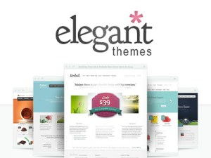 ElegantTthemes WordPress Teme