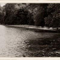 Antique Impressions:  Rock & Shoreline