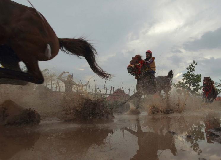 Скаковых лошадей на ипподроме Panda, вне Бима.  Десятки ребенка жокеев, некоторые в возрасте восьми-летний принять участие в гонках.  Фото сделано 18 ноября 2012.  (Beawiharta / Reuters)