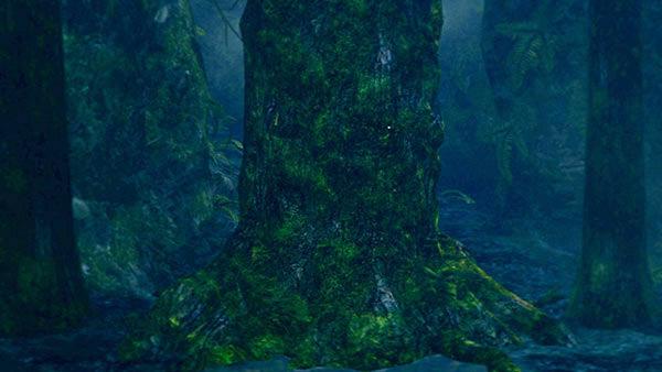 Possessed Tree Dark Souls Wiki