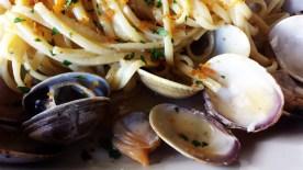 I love clams!