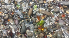 A result of glass that was dumped here over a century ago, the glass has now been smoothed into soft pebbles by the ocean.