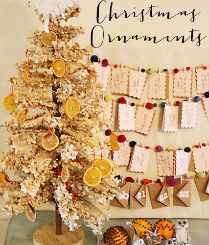 Citrus Christmas Ornaments