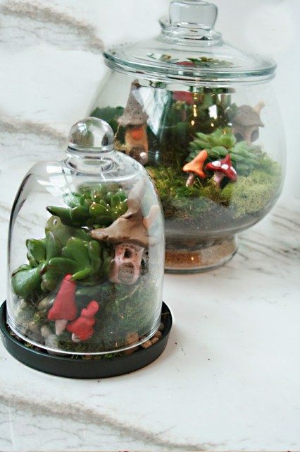 irish village succulent terrarium for st. patricks day decor or leprechaun trap
