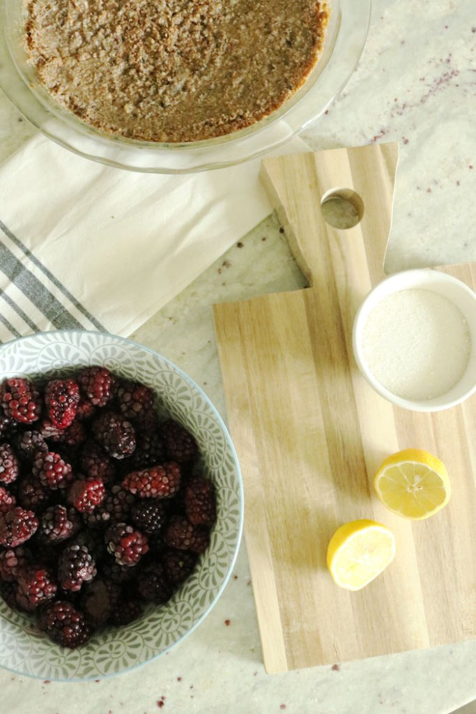 blackberry-syrup-basic-ingredients