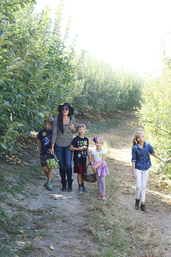 fall-to-do-list-apple-picking-with-kids