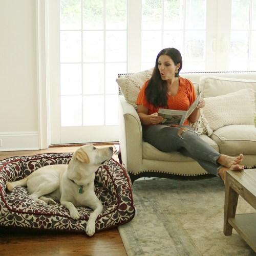 Stylish Pet Beds from La-Z-Boy