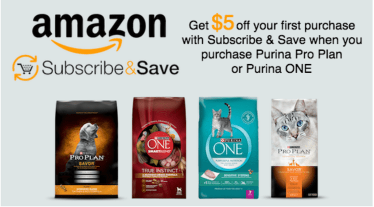 How to spend more time with your pets this summer with #PurinaPetPack and Amazon #CollectiveBias #ad